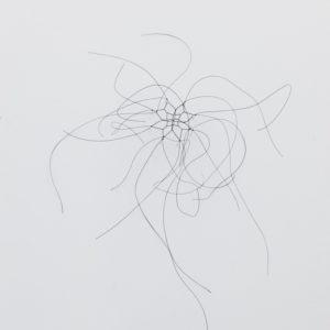 Kleines Haarnetz,2016, Horse hair, needles 28 x 27 x 17 cm