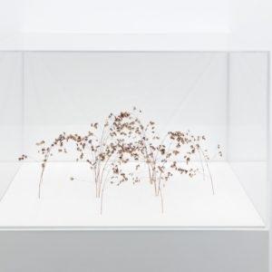 Bogenform, 2015, grass stalks 12,5 x 27 x 27 cm