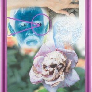 Fleur-de-list, 2015, Pigment print and colour pencil on bond paper Unique Framed: 112 x 88 x 5 cm