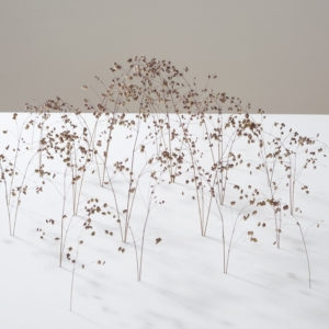Bogenform (Arch Form), 2014, Grass stalks 19 x 50 x 43 cm