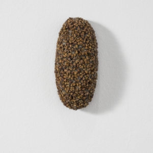 Klettenoval (Burr Oval), 2009, Plant seeds, dog hair 12 x 7 x 6 cm