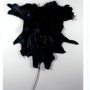 """""""Autoritratto"""", 1972, Skins, electric resister 120 x 140 cm"""