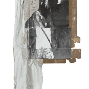 """""""The Hyena to the Lion"""", 2009, Cardboard, photocopies, cloth, ink, transparent lacquer 138 x 65 cm"""