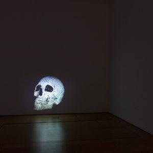 """Vanitas"", 2013, 1 channel data projection, computer code 60 x 45 cm"