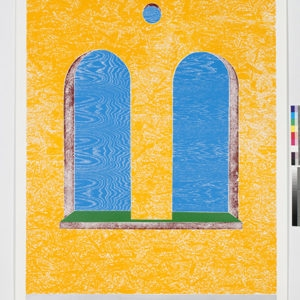 """Woodcuts (Double Window)"", 2011, Coloured woodcut print Ed.9/12 253 x 162 cm"
