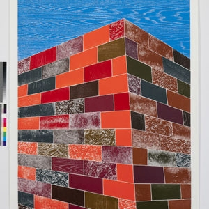 """Woodcuts (Brick Wall)"", 2011, Coloured woodcut print Ed.9/12 253 x 162 cm"