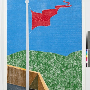 """Woodcuts (Flag)"", 2011, Coloured woodcut print Ed of 12  253 x 162 cm"