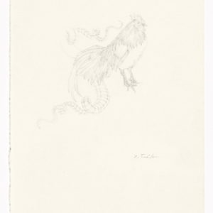"""""""The Book of Imaginary Beings"""" after Jorge Luis Borges (Basilcock), 2013, Pencil on paper 30 x 21 cm (framed: 42,6 x 33,6 x 3.8 cm)"""