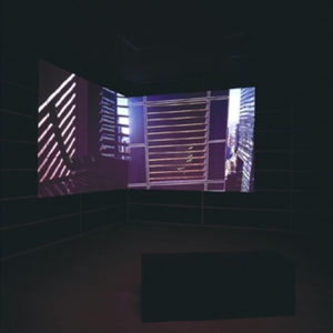 Still Life, 2002, Dual channel video installation,colour with sound  Video projection   4 minutes loop