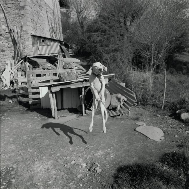Vers Embrun, 1994, Gelatin Silverprint 42 x 42 cm (framed 50 x 60 cm)