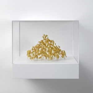 Gelbes Hexagon (Yellow Hexagon), 2019, Plant stalks, 11 x 17 x 15 cm (in Plexiglas vitrine: 22 x 25 x 25 cm)