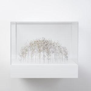 Graskubus (Grass Cube), 2019, Grass stalks, 17 x 37 x 31 cm (In Plexiglas vitrine: 37 x 45 x 40 cm)