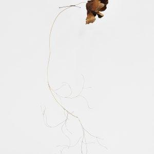 """""""Underground"""", 2020, Wolf Puff, Brass, Silver, 80 x 20 x 35 cm"""