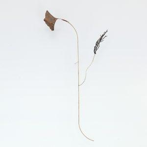 """Nota Bene"", 2020, Copper Plated Sheet, Roots, Brass, Silver, 50 x 12 x 24 cm"