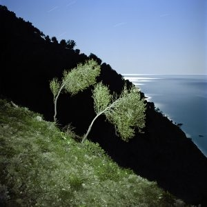Untitled (from the Athos Series), 2011, Archival Inkjet print, Ed. 1/5, 103 x 100 cm