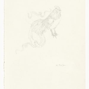 """Christiana SOULOU """"The Book of Imaginary Beings"""" after Jorge Luis Borges (Basilcock)"""", 2013, Pencil on paper, 30 x 21 cm"""